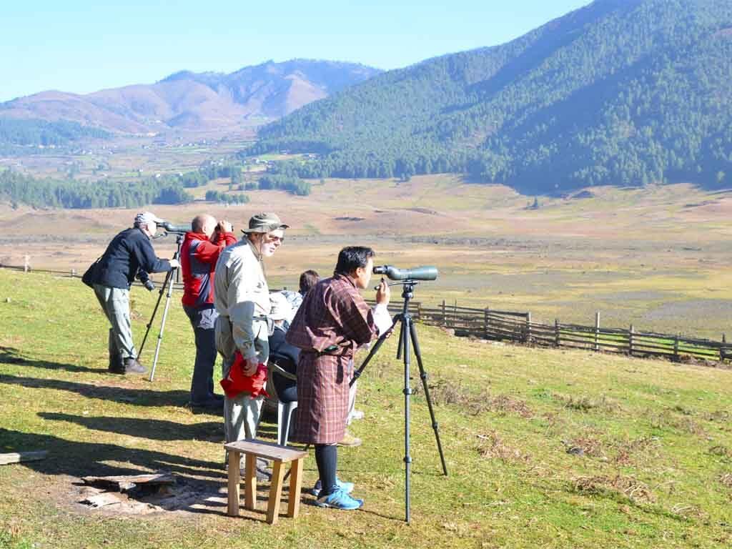 Bird watching Tour in Bhutan