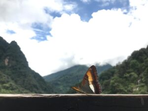 Mountains of Gasa