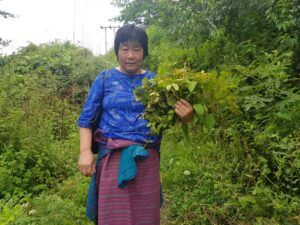 Lady with herbal plants
