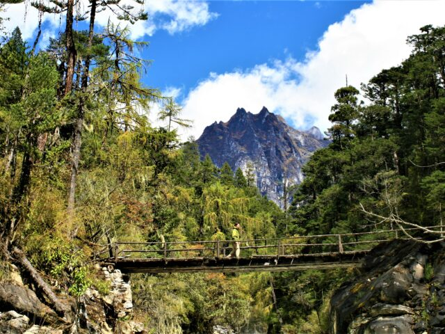 Interesting Facts about Bhutan - Bhutan is a carbon neutral country