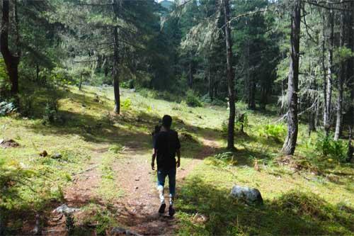 Longtey Hike