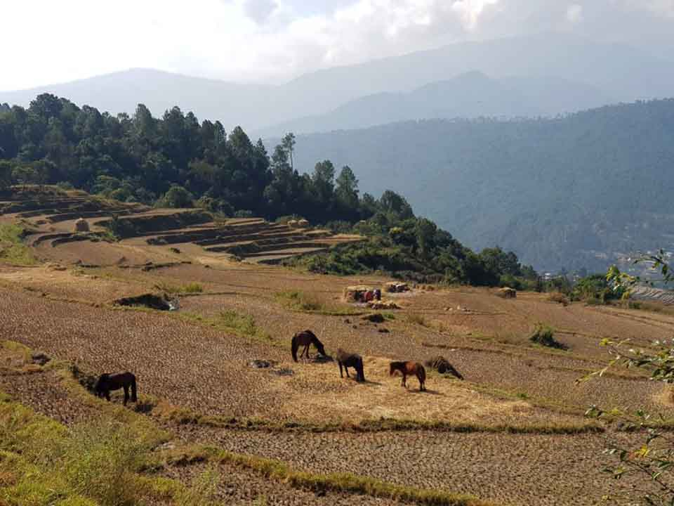 Bhutan Village Life